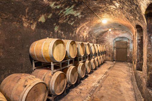 Vini---vini---La Tenuta si estende per 1200 ettari sulle colline fiorentine ricche di vitigni.